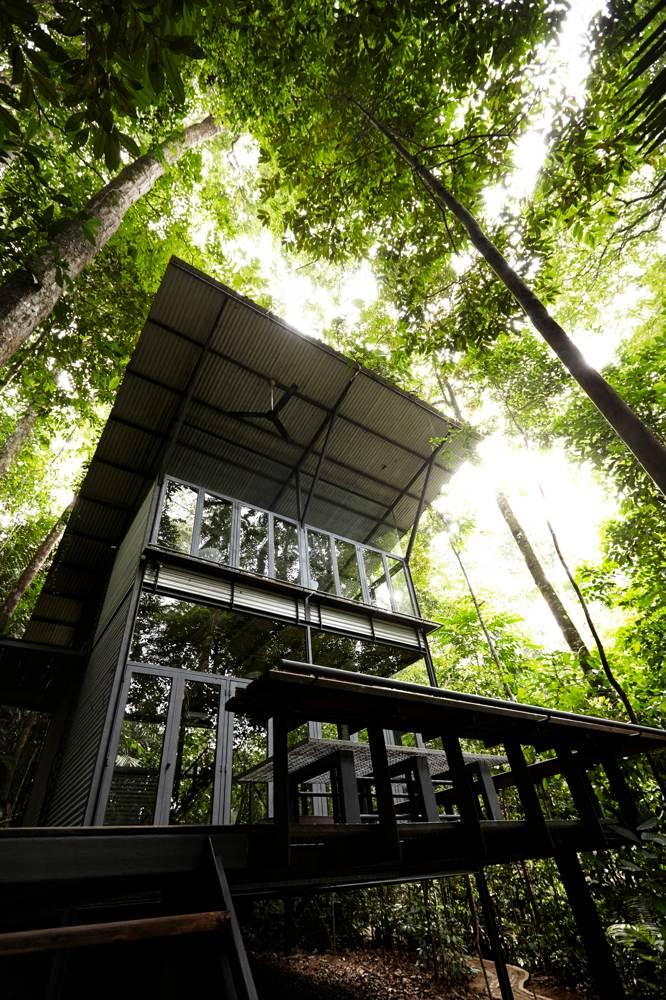Natural Retreats Into The Woods