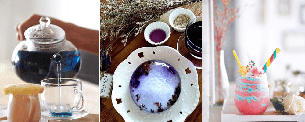 Lavender Vibes at Terracotta Cafe & Boutique